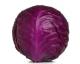 Chou pomme lisse rouge AB (plus de 1,5 kg)
